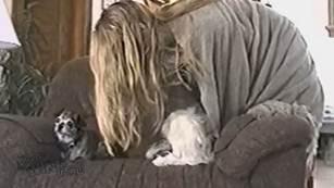Prova a strofinare il tuo cane con una coperta in pile e guarda che succede?