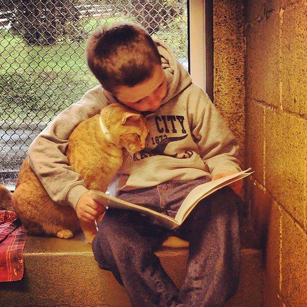 """Questi bambini """"leggono libri ai gatti"""", sai perchè?"""
