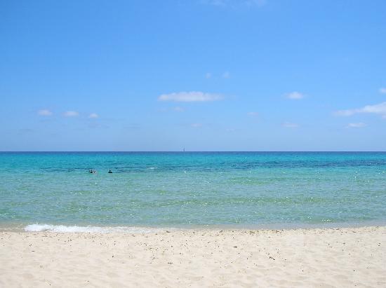 La scienza dice che il mare fa bene al cervello e rende felici