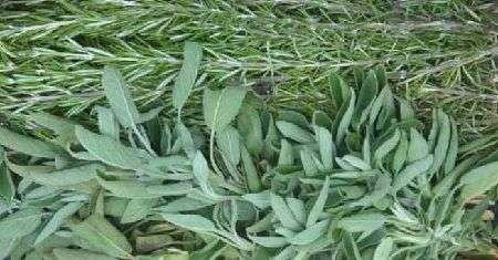 Un semplice mix di erbe per arrosti, patate e sughi