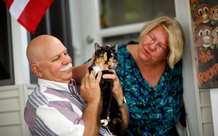 La gattina che torna a casa dopo 62 giorni e 300 chilometri